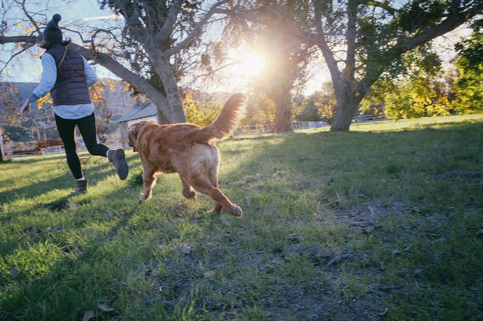 woman running with dog in park mike ritland